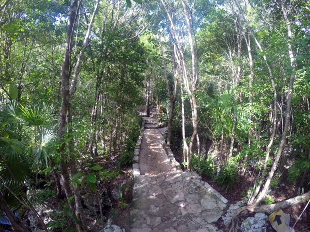 tropical-path-to-the-cenote-azul